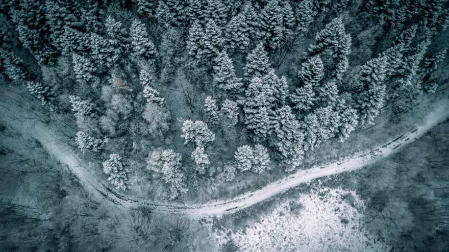 aerial photography of forest and road covered with snow